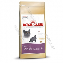 royalcanin-britishshorthair-adult_720x600-copy