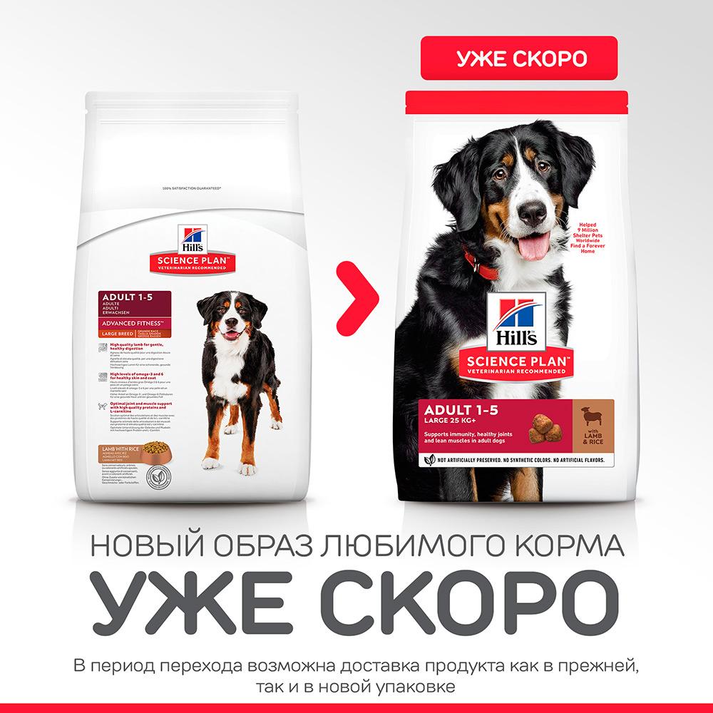 Корм Хиллс для взрослых собак крупных пород ягненок с рисом (Hills SP Adult Large Breed Lamb & Rice)