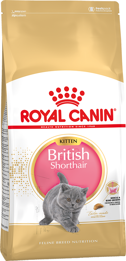 Корм Роял Канин для британских короткошерстных котят до 12 месяцев (British Shorthair Kitten)