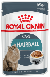 f_hairball-care-in-gravy