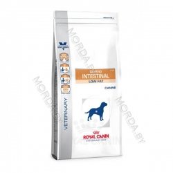royal-canin-gastro-intestinal-low-fat-trocken-hund_z1-copy