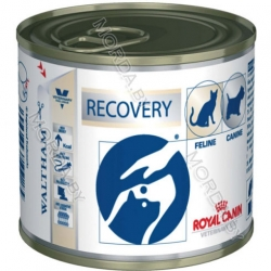 royal-canin-recovery-lata-195g_1-copy
